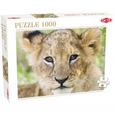 Puzzle 1000 pièces : Lion