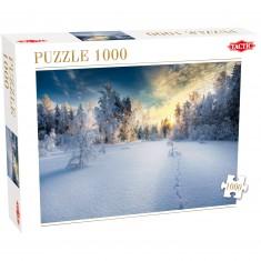 Puzzle 1000 pièces : Paysage d'hiver