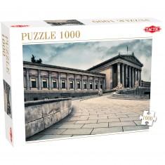 Puzzle 1000 pièces : Vienne