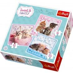 Puzzle 20 à 50 pièces : 3 puzzles : Petits chats