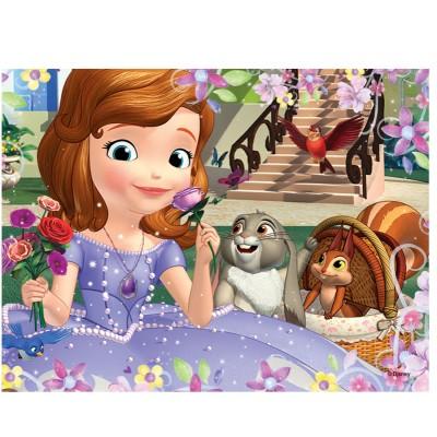 Puzzle 30 pi ces princesse sofia bouquet de roses jeux - Lapin princesse sofia ...