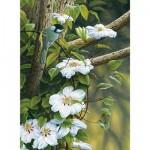 Puzzle 500 pièces : Fleurs de printemps