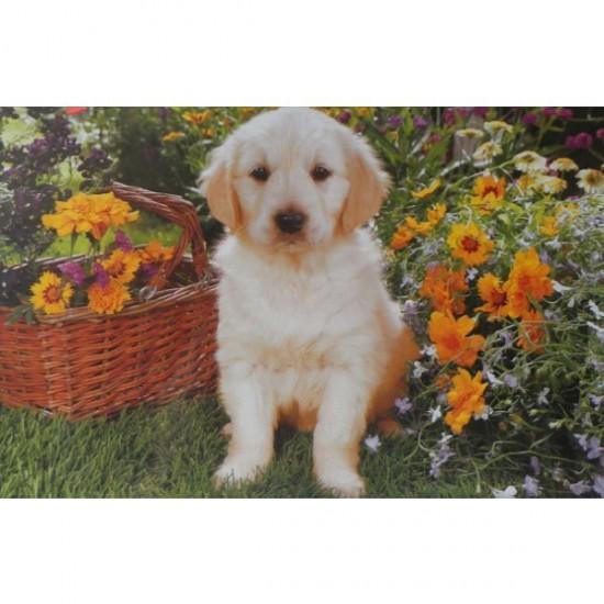 Puzzle 500 pièces - Petit labrador dans le jardin - Trefl-37160