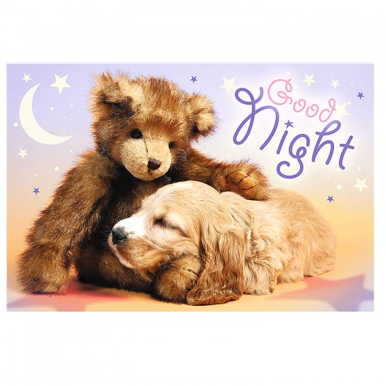 Puzzle 60 pièces : Bonne nuit - Trefl-17270