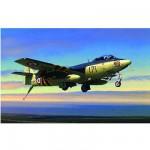 Maquette avion: Hawker Seahawk FGA MK.6