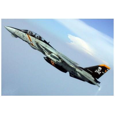 Maquette Avion : F-14B Tomcat - Trumpeter-TR03918