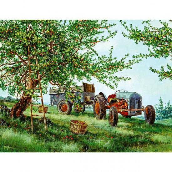 Puzzle 1000 pièces : La récolte des pommes - White-908