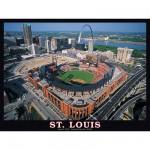 Puzzle 550 pièces - Saint Louis, Missouri, USA