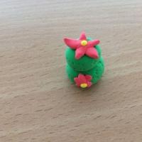 De jolis cactus pour la fête des grand-mères - Image n°10