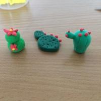 De jolis cactus pour la fête des grand-mères - Image n°12