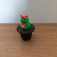 De jolis cactus pour la fête des grand-mères - Image n°13