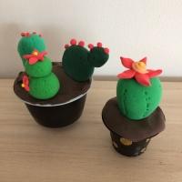 De jolis cactus pour la fête des grand-mères - Image n°14