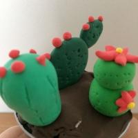 De jolis cactus pour la fête des grand-mères - Image n°15
