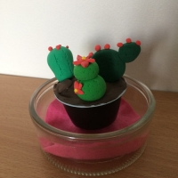 De jolis cactus pour la fête des grand-mères - Image n°16