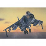 Maquette avion : FRS.1 Sea Harrier