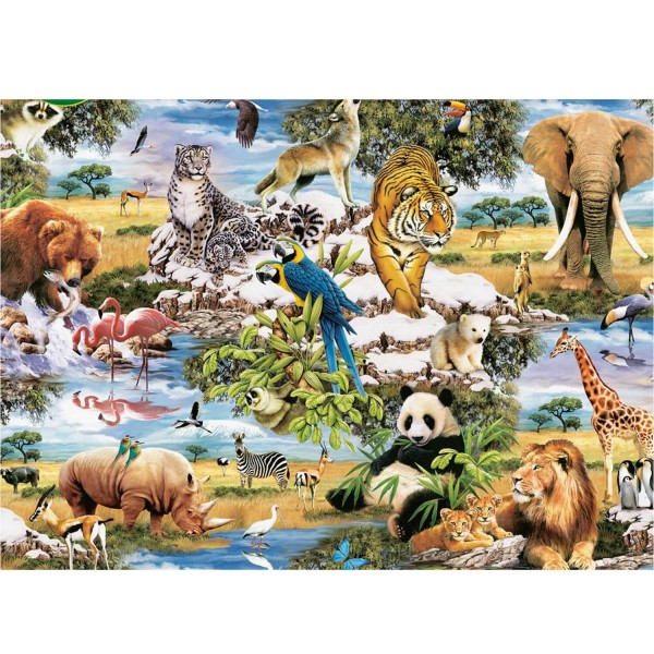 Puzzle 1000 pièces : Animaux sauvages - King-58062