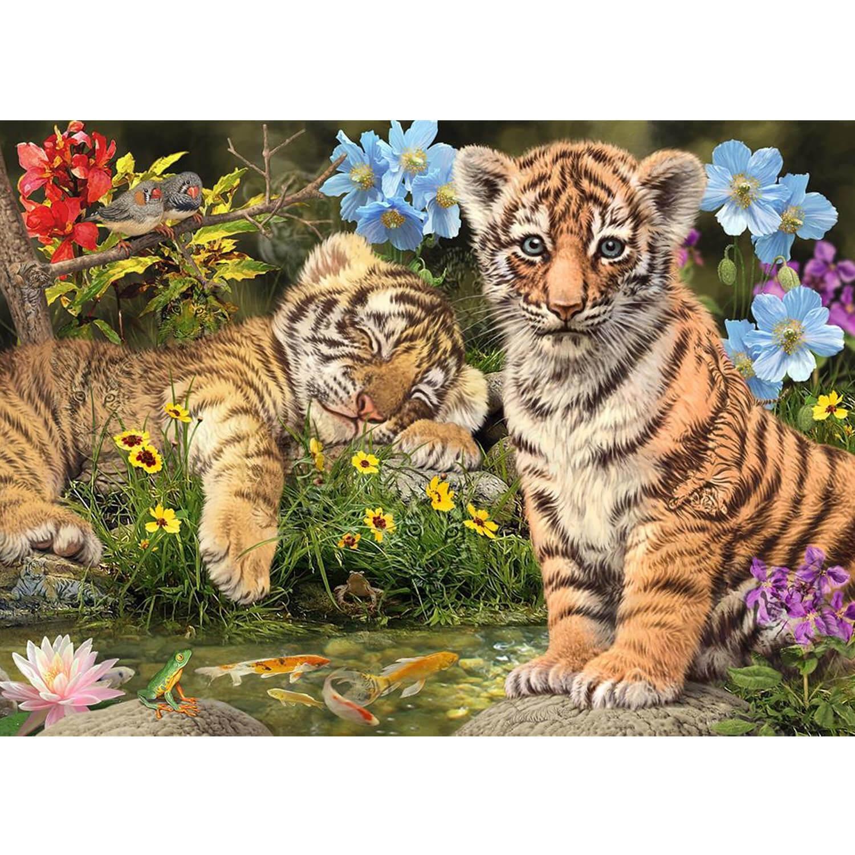 Puzzle 1000 pièces : Secret Collection : Bébés tigres