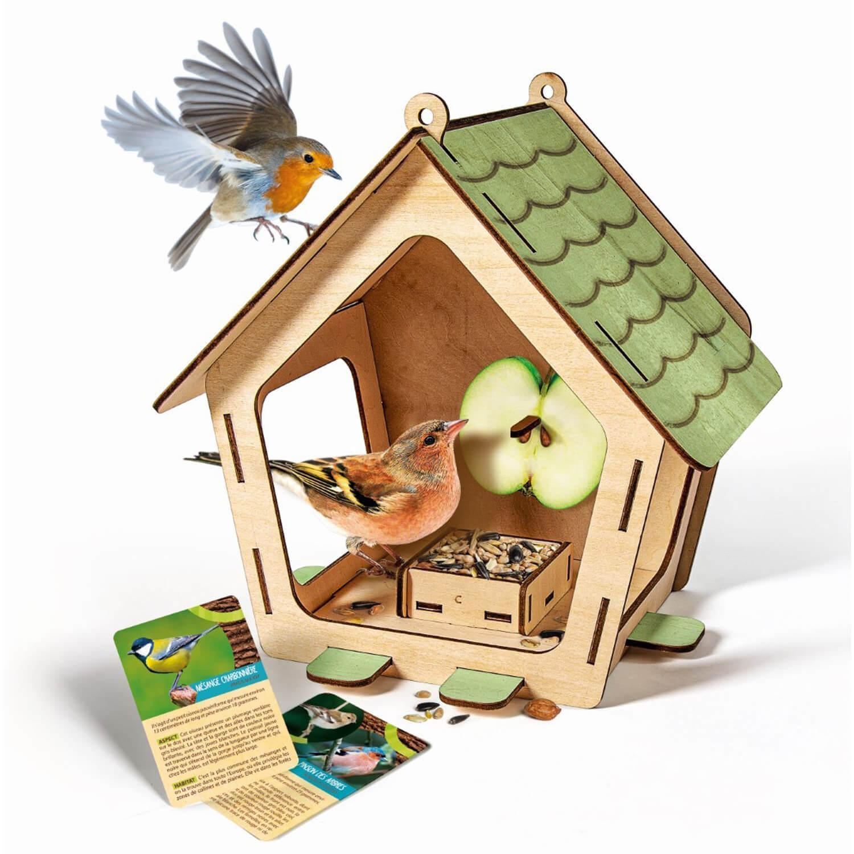 Kit science et jeu : Mangeoire pour oiseaux