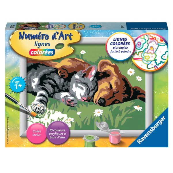 peinture au num ro num ro d 39 art lignes color es comme chien et chat jeux et jouets. Black Bedroom Furniture Sets. Home Design Ideas