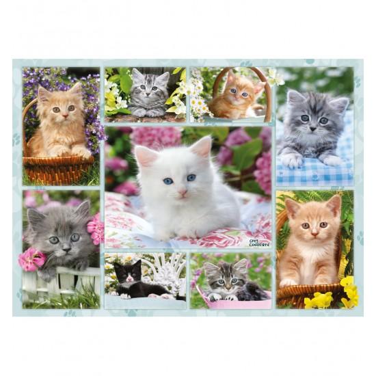 puzzle 500 pi ces p le m le de chatons puzzle ravensburger rue des puzzles. Black Bedroom Furniture Sets. Home Design Ideas