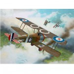 Maquette avion : Sopwith F1 Camel